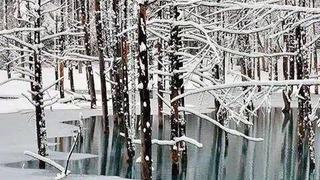 下雪后瑞士蓝湖,美如仙境