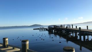 新西兰北岛之旅 在罗托鲁瓦湖坐船游湖吃早餐