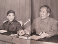 文化大革命中的毛泽东和林彪十一