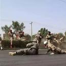 媒体:阅兵式上遭恐袭 或成为伊朗安全形势的拐点
