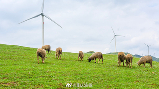 一个夏日避暑的好地方——盘州乌蒙大草原