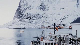 挪威的冬日