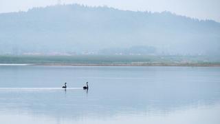 早晨四点多的辽宁凤城叆河景色