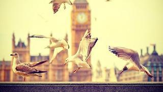 美轮美奂英国大本钟