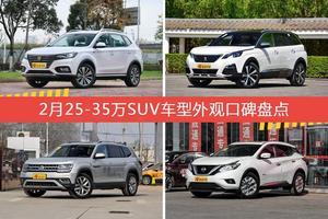 荣威eRX5新能源/标致5008等,2月25-35万SUV车型外观口碑汇总