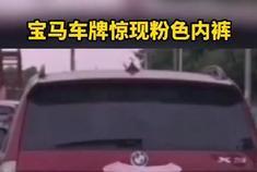 哭笑不得!网友纷纷举报浙江宝马X3牌照上挂了一条三角内裤……