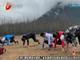 视频-国家田径队举行半马测试赛 董国建获得第一