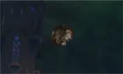魔兽玩家趣味视频:一只总会滚下台子的酒仙武僧