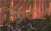 地狱霹雳火探索视频:8.0争霸艾泽拉斯烧树之谜