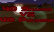 魔兽世界怀旧视频:60级 40圣骑士vs40萨满乱斗