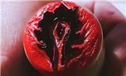 魔兽玩家手工作品 石材雕刻而成的部落徽章印记