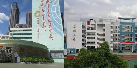 家长们必看:深圳最好的小学排名