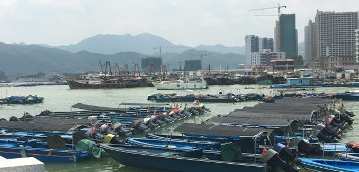 天鸽逼近:惠州数百条渔船回港避风