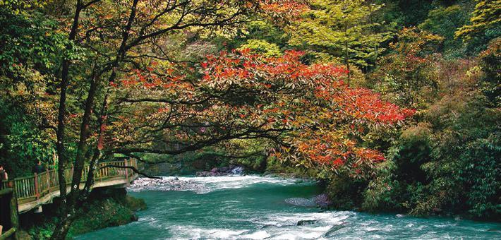 广东千家湿地森林公园将免费开放