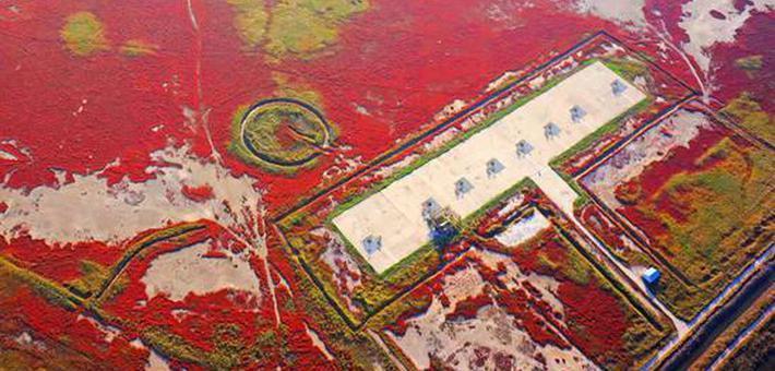 我国新指定7处国际重要湿地
