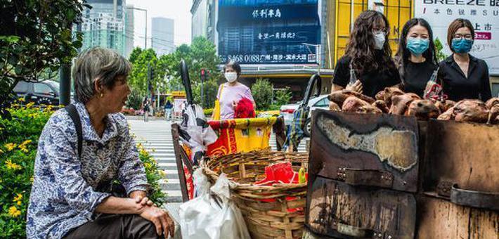 快餐车见证广州的过去和现在