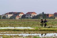 广东形成大扶贫格局 150万相对贫困人口已脱贫