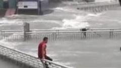 广东一海鲜店老板台风天跳海游泳:被老婆骂了