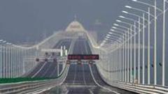 """港珠澳大桥保护白海豚花了3.4亿 实现""""零伤亡不搬家"""""""