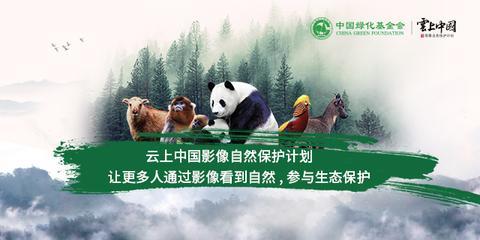 云上中国思想聚会成功举办