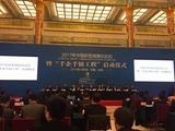 2017中国新型城镇化论坛开幕