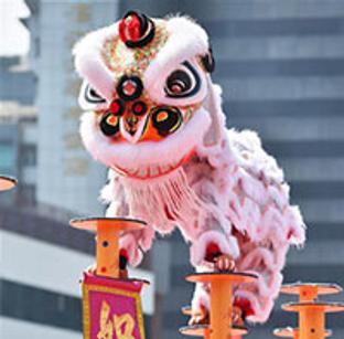 中国—东盟狮王争霸赛