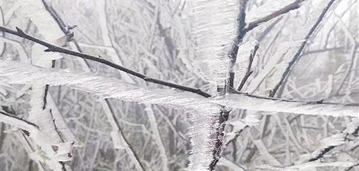 气温接连创新低 广西多地现冰凌美景