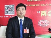 逾3500亿!广西4万项目支持县域经济发展和乡村建设