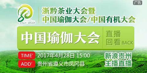 """中国瑜伽大会""""凤羽伽人""""魅力文化大赛决赛"""