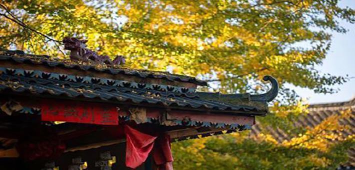 贵州丹寨秋景