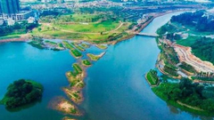 潮起海之南:绿色宝岛的生态坚守