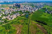 海南省长谈营商环境建设:把企业冷暖放在心上