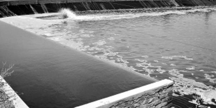 8月1日,三亚市崖州区政府继续督促解决虾塘排污问题,努力维护人民群众的良好生产生活环境。 7月31日,崖州区政府接到中央第三生态环保督查组转办的群众信访举报件称:崖州区盐灶村西海岸有人养虾,无污水处理设施,污水未处理就排入与大海相通的沟渠,或通过水管直接排到大海及附近海滩,防风林因长期浸泡在高污染水体中而死亡。 接到投诉后,崖州区副区长贾鹏组织区海洋水务局、生态环境局、农业农村局、综合行政执法局、项目中心等相关职能部门,会同三亚市市场监督管理局崖州分局和盐灶村委会,组成联合调查组,赶赴现场进行调查处理
