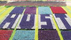 华科开学典礼创意十足 七千新生摆出校名首字母缩写