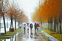 武汉雨水今起歇息3天 气温缓慢回升抓紧洗衣晾晒