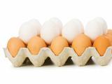 鸡蛋最营养吃法排行