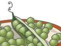 护心脏的豌豆竟然是水果
