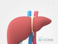 肝脏变坏的五个信号