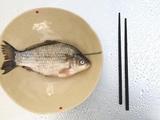 鱼身上的黄金部位