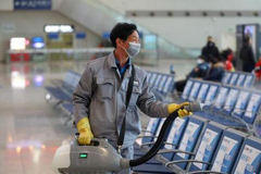 交通运输部:九省份已有序恢复省际道路客运