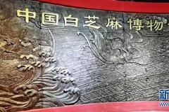 """河南平舆:""""小芝麻""""带动大产业"""