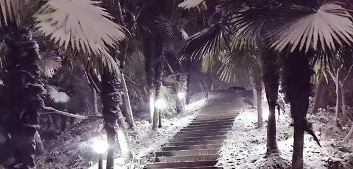 一场雪 才知道素颜的信阳有多美