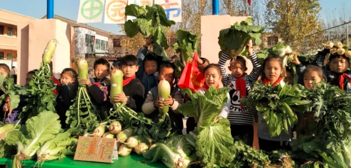 河南这所小学厉害了 校园变成农场