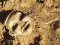 红山文化考古80周年:或已追寻到五帝行踪
