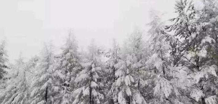 一秒入冬大兴安岭九月飘雪