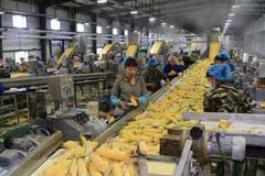 克山县壮大产业 优化结构 推动乡村全面振兴