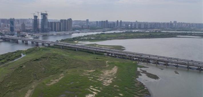 江面见胖 松花江哈尔滨段水位明显上涨
