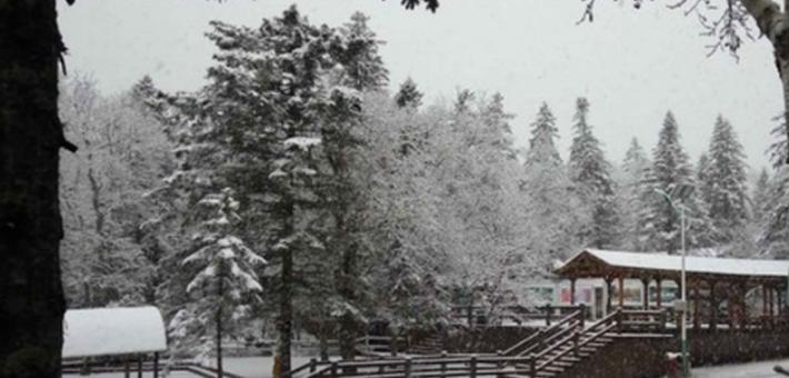 凤凰山已飘落今年头场雪