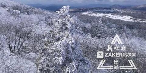 凤凰山雾凇雪松齐现