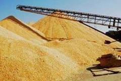 齐齐哈尔龙头企业提升粮食加工比重 各项指标均大幅增加